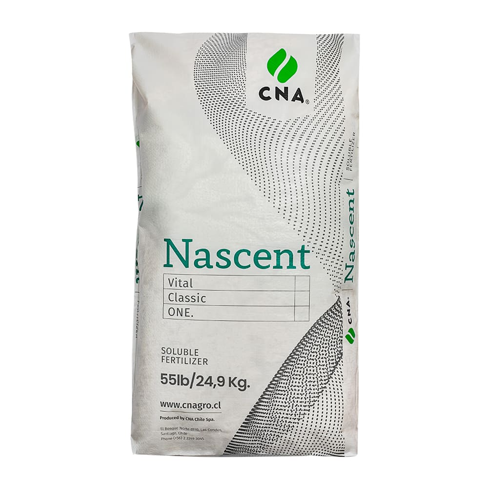 Block bottom PP woven bags with inner PE lamination