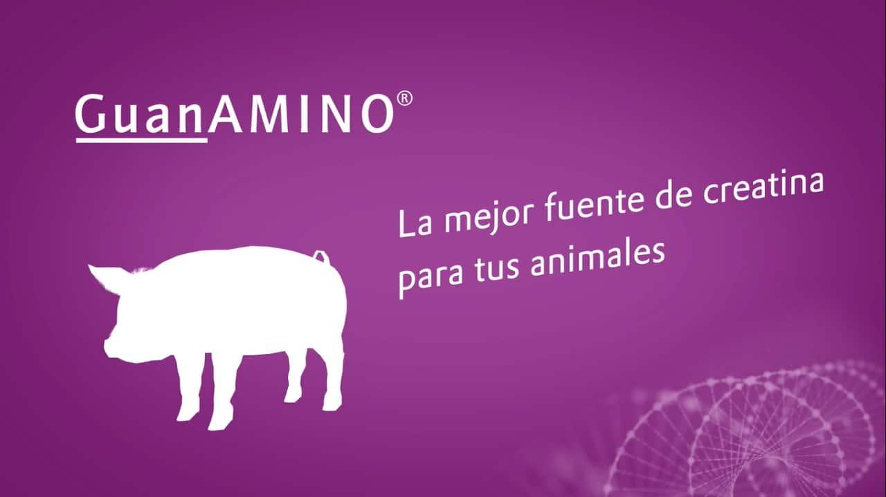 Guanamino
